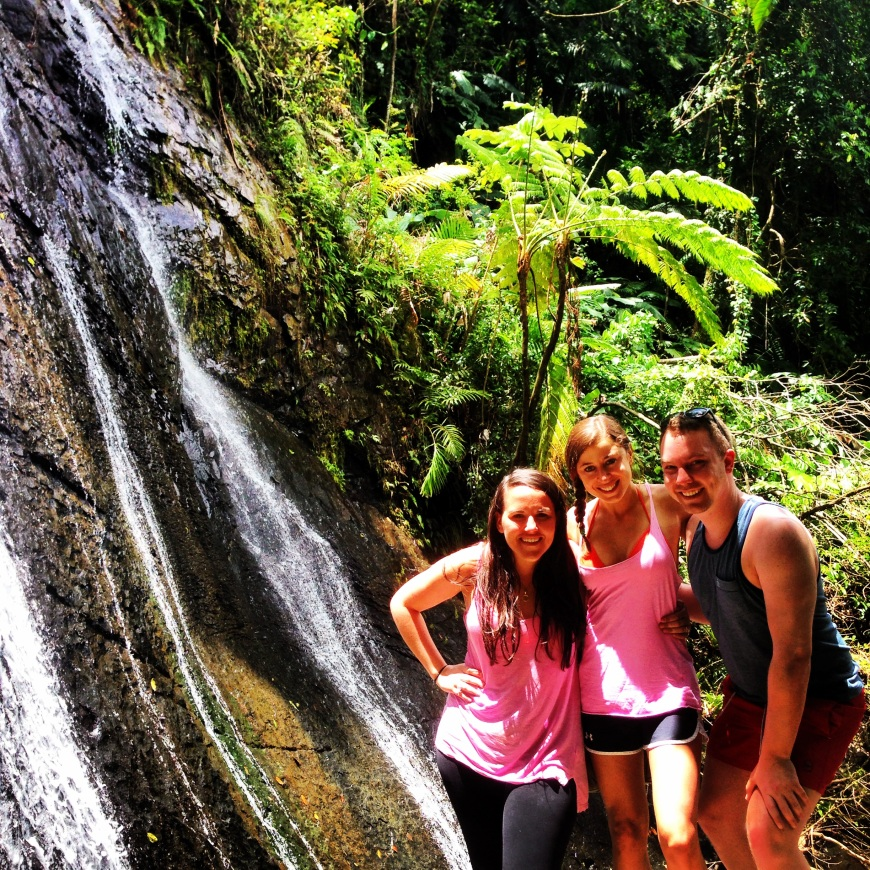 Bopping in the rainforest